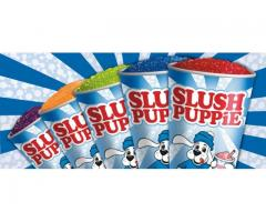 Slush Puppie Machine Hire (Original Product) R1200 includes 2x flavours & Cups